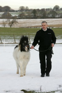 Scottish SPCA Pic Peter Devlin