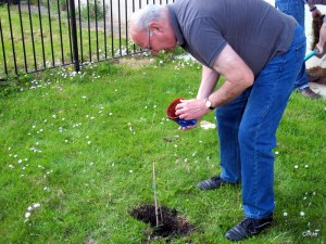 Bob planting his tree in Circle's front garden