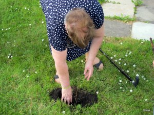 Mae planting her tree in Circle's front garden