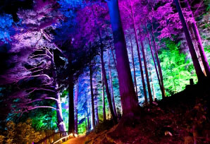 enchforest